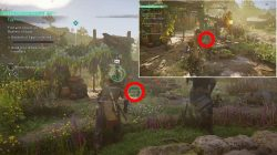 where to find egg hunt eastereggs ac valhalla
