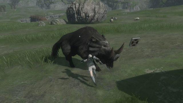 Nier Replicant Defeat Wild Boar How to Kill it for Boar Hunt Quest