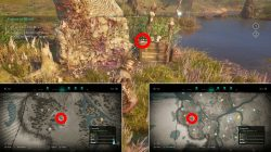wrath of the druids assassins creed valhalla wren clue locations
