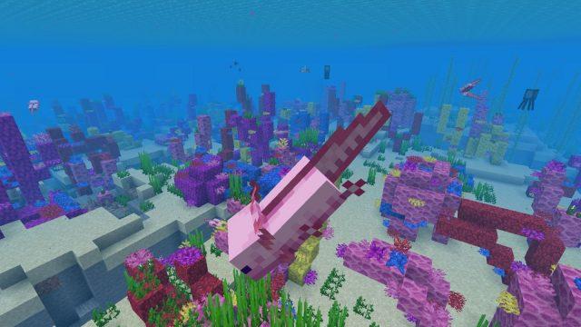 Minecraft Axolotls - How to tame Axolotl, what do Axolotls eat