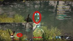 where to find water arcana new world ice gauntlet