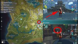 horsetail locations genshin impact how to get