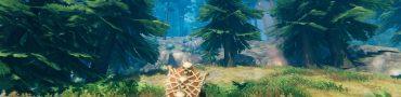 how to get bone tower shield valheim