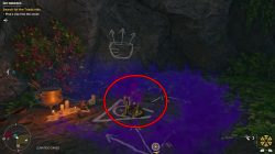 pick up ida's relic to complete the treasure hunt