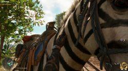 the Mogote Zebra mount FC6