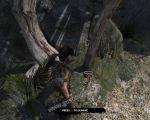 poi_image584 thumbnail