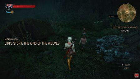 Quest Ciri's Story: The King of the Wolves image 272 middle size