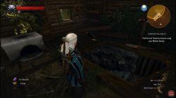 Quest Temerian Valuables image 61 thumbnail