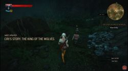 Quest Ciri's Story: The King of the Wolves image 272 thumbnail