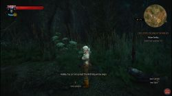 Quest Ciri's Story: The King of the Wolves image 274 thumbnail