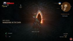 Quest Wandering in the Dark image 167 thumbnail