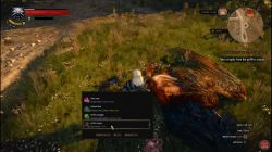 Quest The Beast of White Orchard image 76 thumbnail