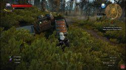 Quest Tough Luck image 191 thumbnail